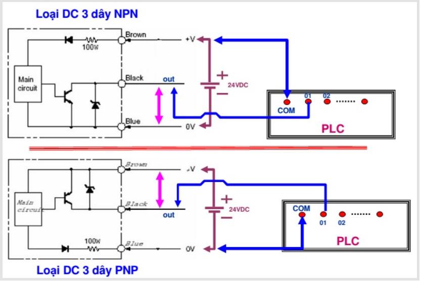 Cách đấu cảm biến với PLC loại 3 dây